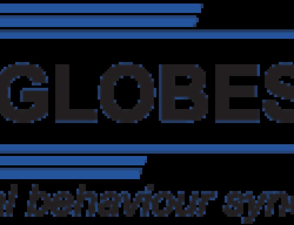 Pohľad Globesy s.r.o. na absolventov FRI v praxi